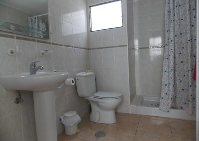 Apartment 202 - bathroom